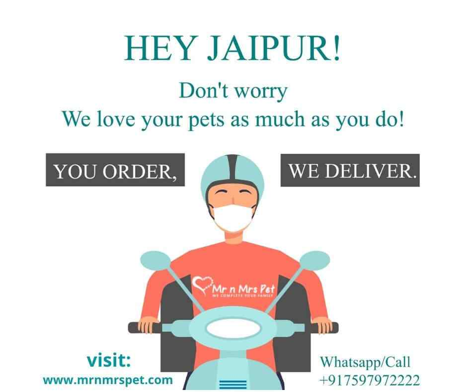 Pet food and essentials at your doorstep in Jaipur during lockdown | Whatsapp/Call us +917597972222